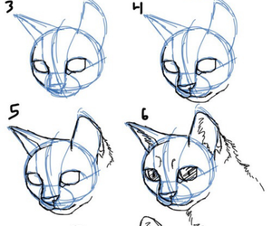 cat, drawing, and how to draw image