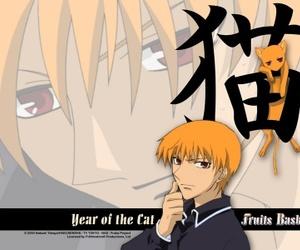 cat, anime, and fruits basket image