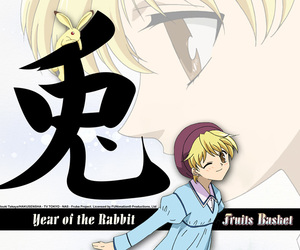 fruits basket, anime, and rabbit image