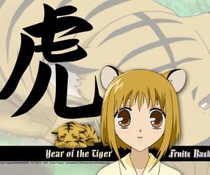 fruits basket, anime, and kisa image