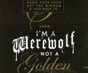 LUke, book, and quote image