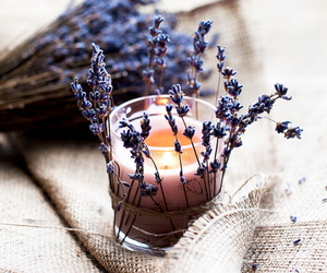 candle and lavender image