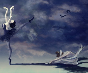 ballet, black swan, and dance image