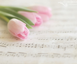 flowers, music, and note image