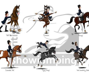 dressage, horse, and riding image