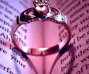book, gift, and ring image