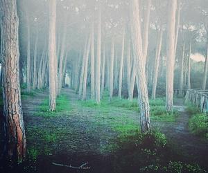 alice, neverland, and wonderland image
