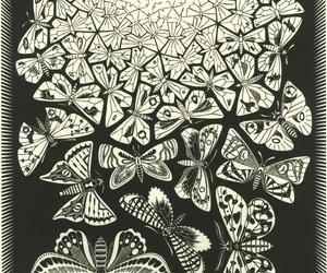 butterflies, M.C. Escher, and art image