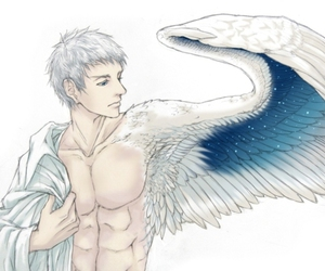 bird, boy, and male image