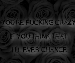 bands, Lyrics, and roses image