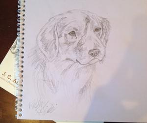 adorable, artist, and beagle image