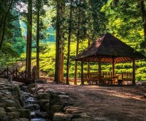 korea and landscape image