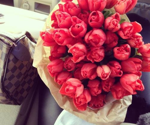 red, flowers, and love image