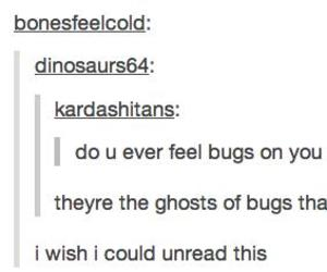 funny, tumblr, and bugs image