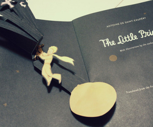 book, photography, and the little pince image