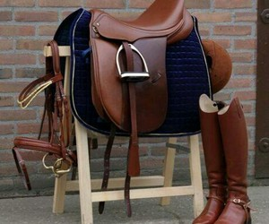 brown saddle shoes horse image