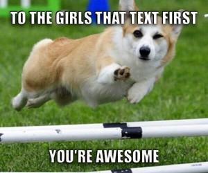 dog, awesome, and girls image