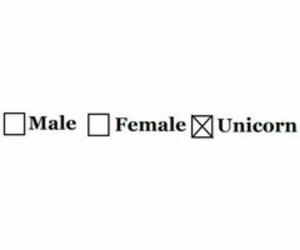 unicorn, male, and female image