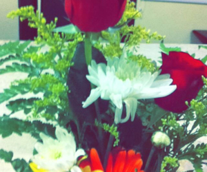 colors, flowers, and gift image