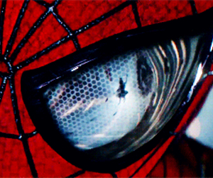 spiderman, gwen stacy, and the amazing spiderman 2 image