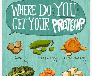 protein, food, and healthy image