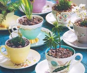 cups, nature, and cute image