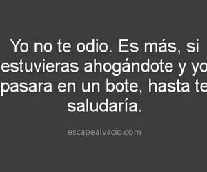 frases, funny, and odio image