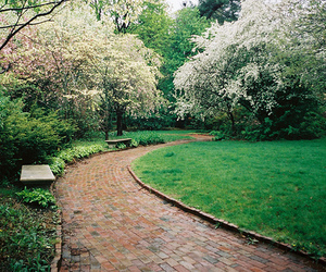 park, trees, and garden image