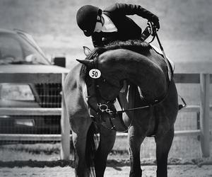 competition, equestrian, and horse riding image