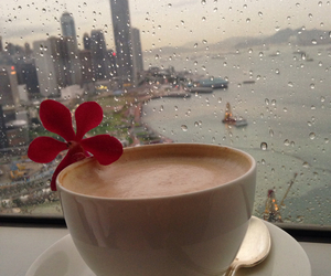 city, coffee, and flower image