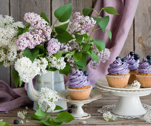 cupcakes and purple image