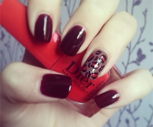 leopard, print, and red image
