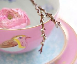 cup, bird, and pink image