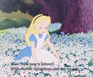 alice, flowers, and wonderland image