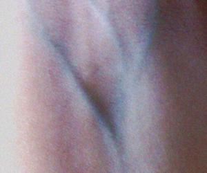 veins, heart, and pale image