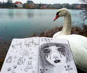 drawing, Swan, and grunge image