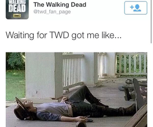 twd and thewalkingdead image