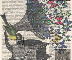 music, butterfly, and art image