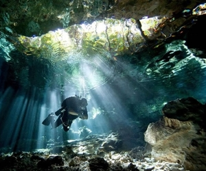 diving and summer image