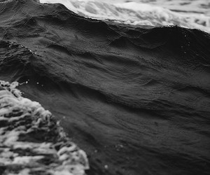 beautiful, black and white, and photography image