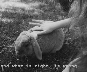 black and white, deep, and wrong image