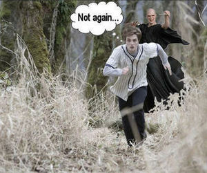 harry potter, voldemort, and twilight image