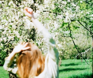 35mm, blossom, and dance image