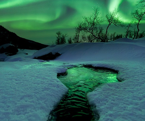 snow, winter, and aurora image
