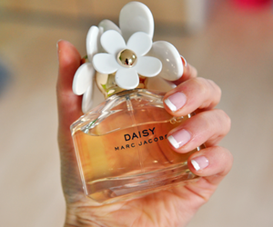 perfume, daisy, and marc jacobs image
