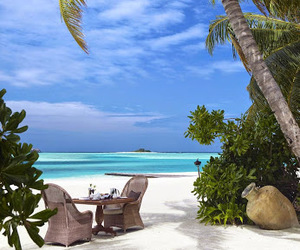 beach, lunch, and Maldives image