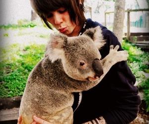 Koala, never shout never, and christofer drew image