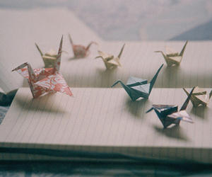 origami, photography, and Paper image