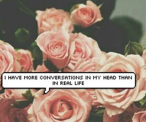 conversation, rose, and quote image