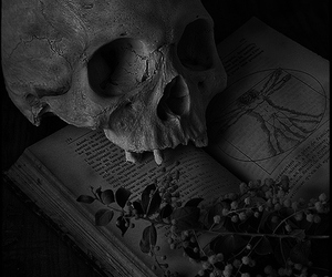 book, black and white, and skull image
